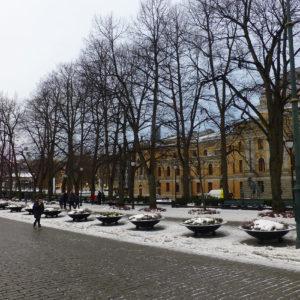 Rue Karl Johans Gate, au bord de Studenterlunden Park
