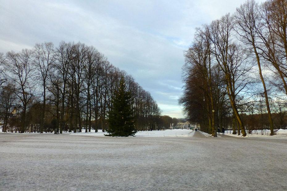 Un sapin de Noël à l'entrée de l'immense parc Vigeland