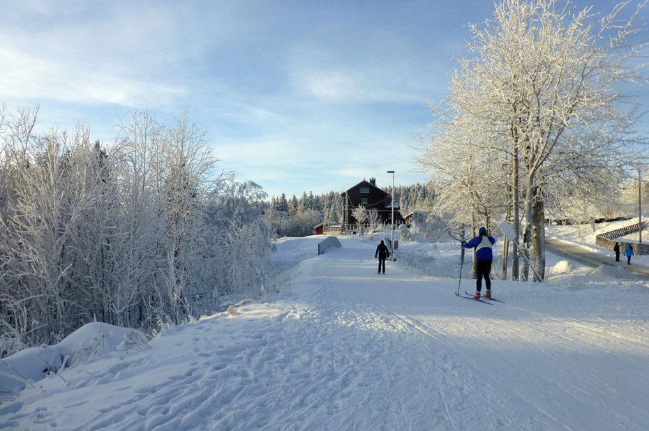 Le ski de fond est un sport national en Norvège