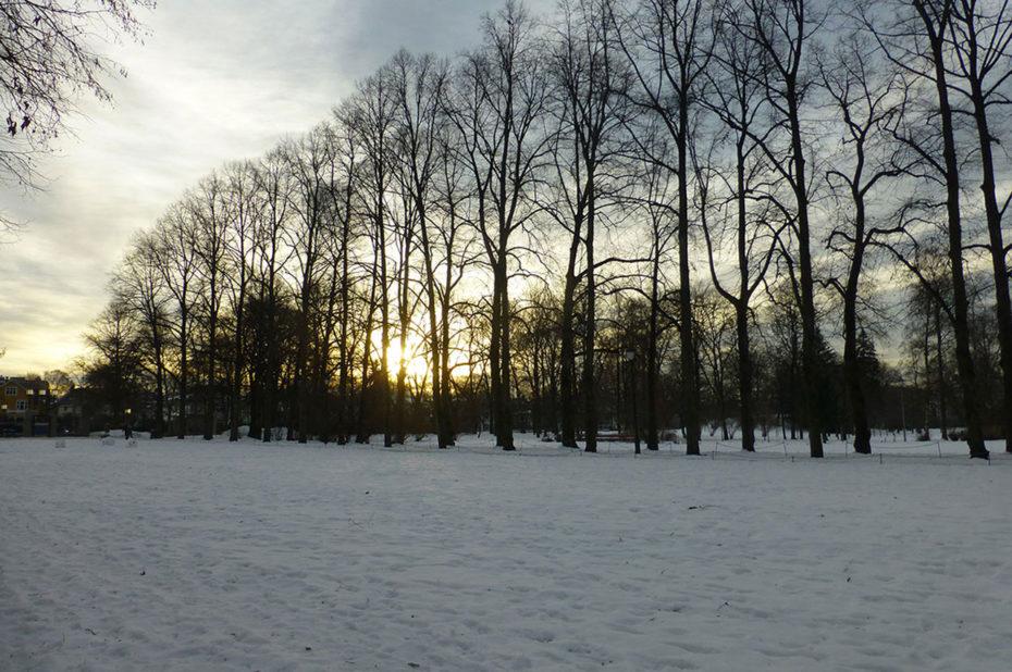 Le soleil bas de décembre