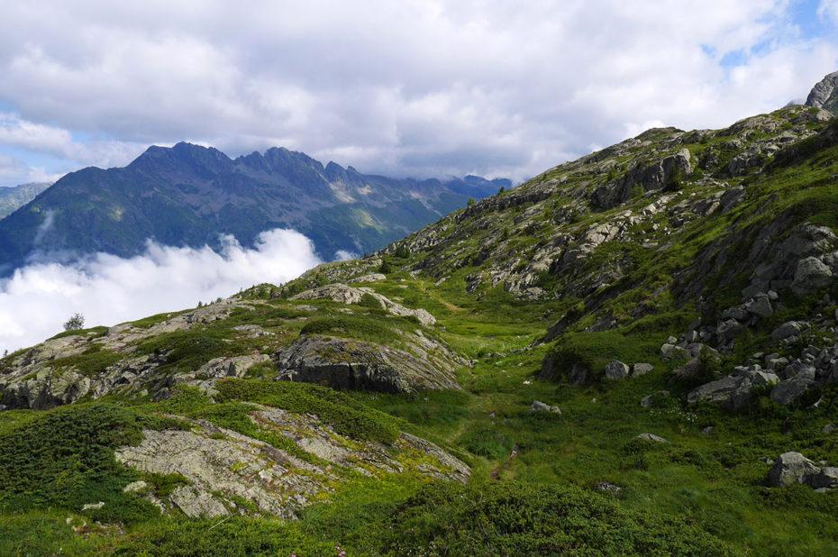 Des chemins nombreux dans une montagne verdoyante