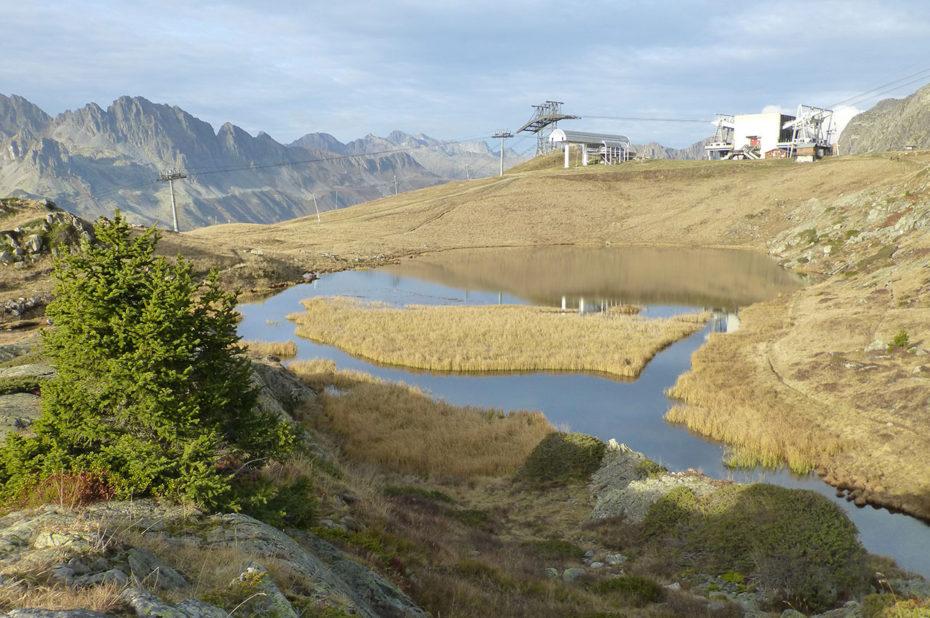 Des herbes marron autour du lac Carrelet après la chaleur de l'été