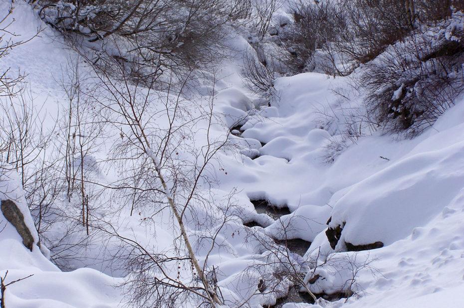 Un petit torrent presque recouvert de neige