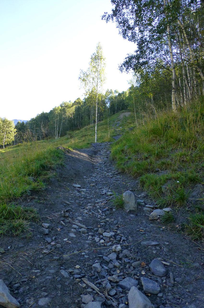 Le chemin du GR qui relie Besse-en-Oisans au plateau d'Emparis