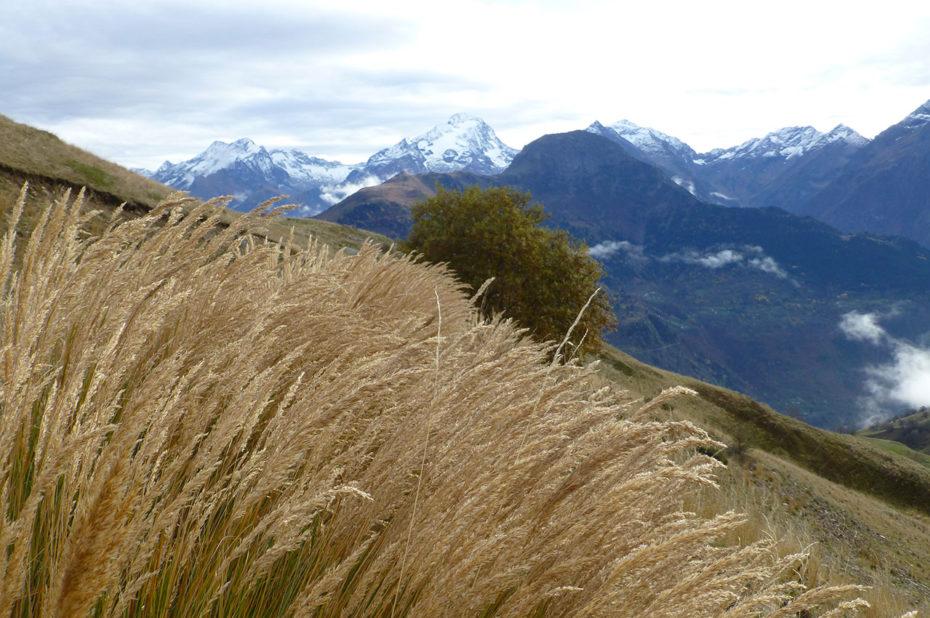 Randonnée au col de Cluy depuis le col de Sarenne