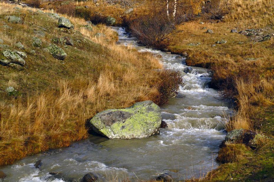Rivière la Sarenne entourée des couleurs de l'automne