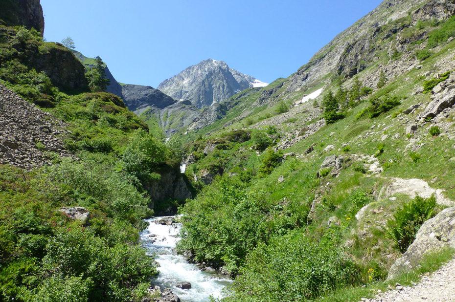 Un des nombreux ruisseaux qui descendent de la montagne