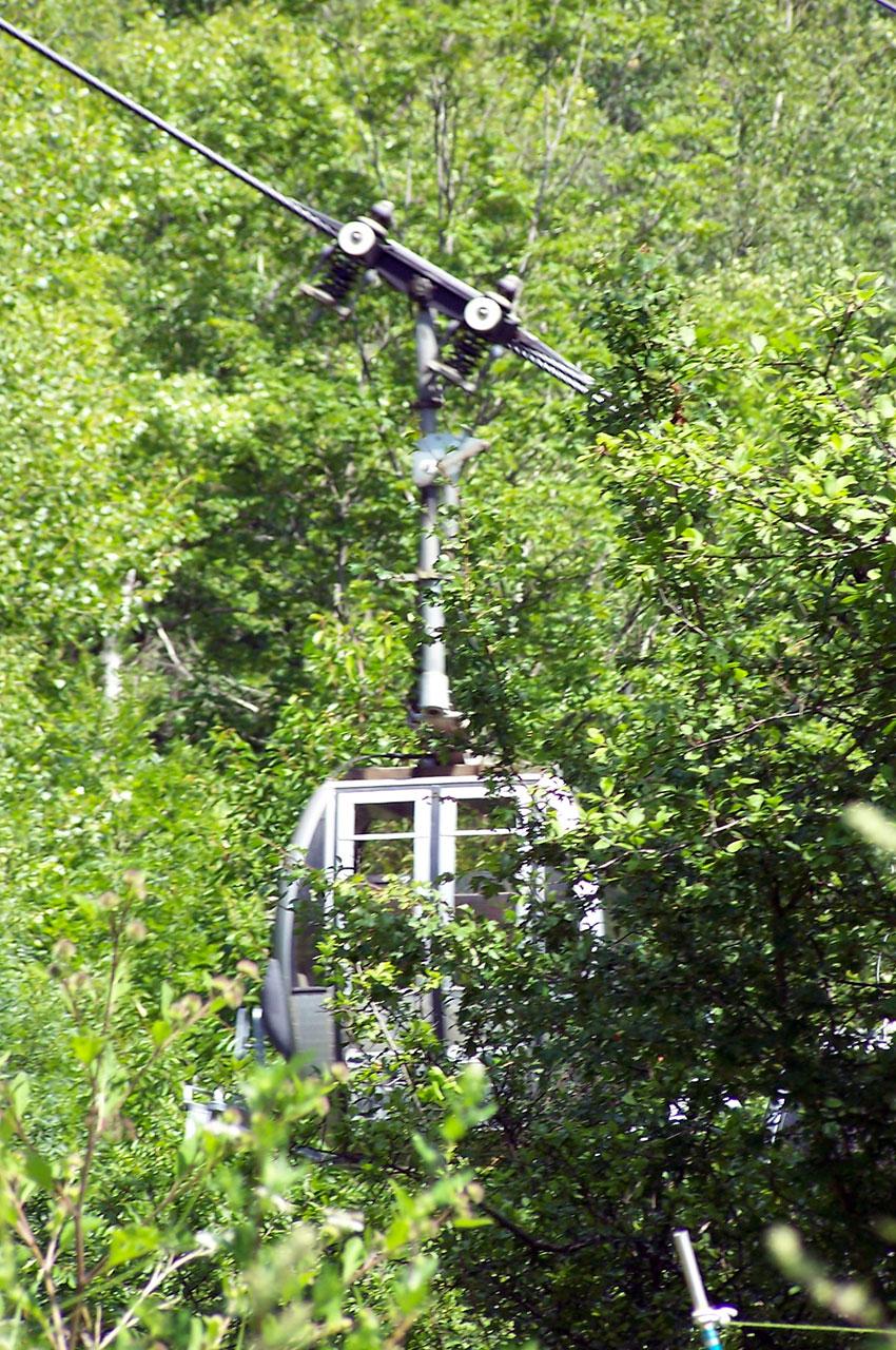 Le téléphérique de Vénosc dans les arbres