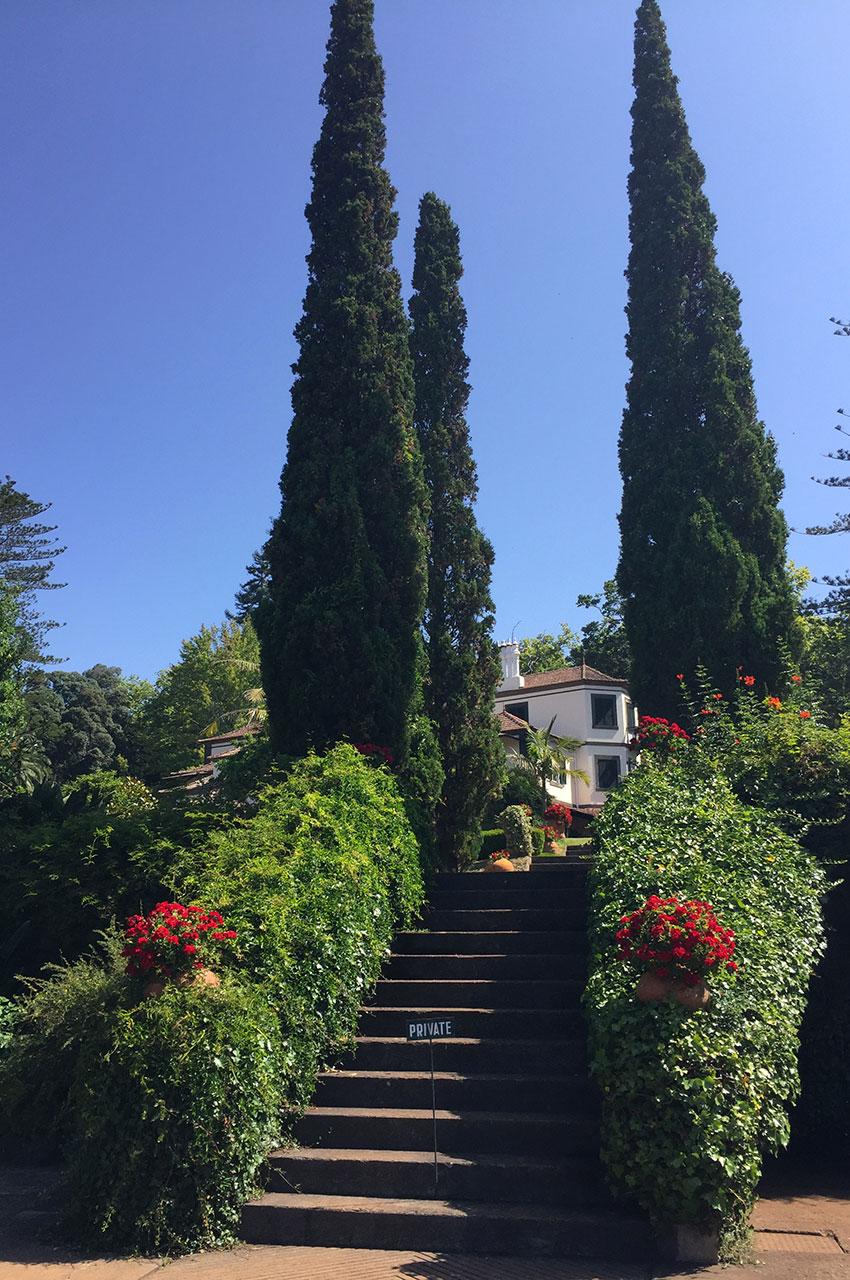 Escaliers qui montent à la maison du domaine de Palheiro