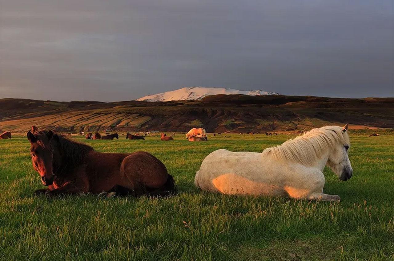 Les hautes terres à visiter en Islande