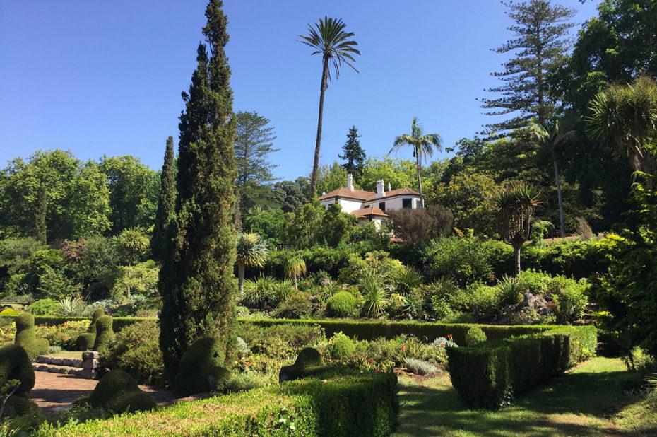 Les jardins de Palheiro, situés sur une colline au-dessus de Funchal