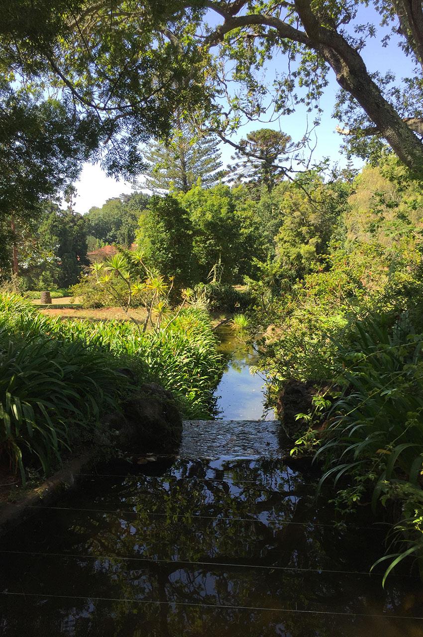 Des petits canaux traversent les jardins de Palheiro