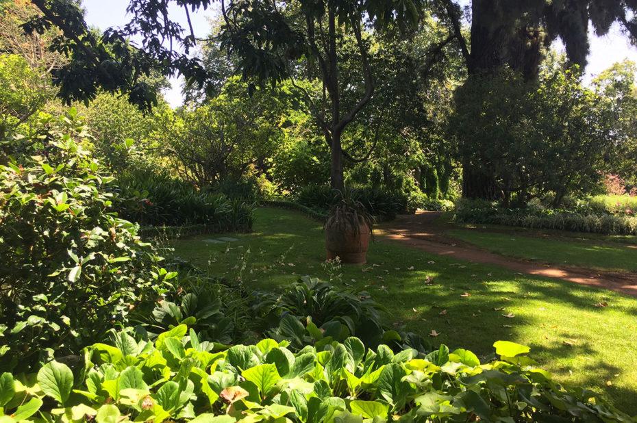 Promenade dans les jardins de Palheiro