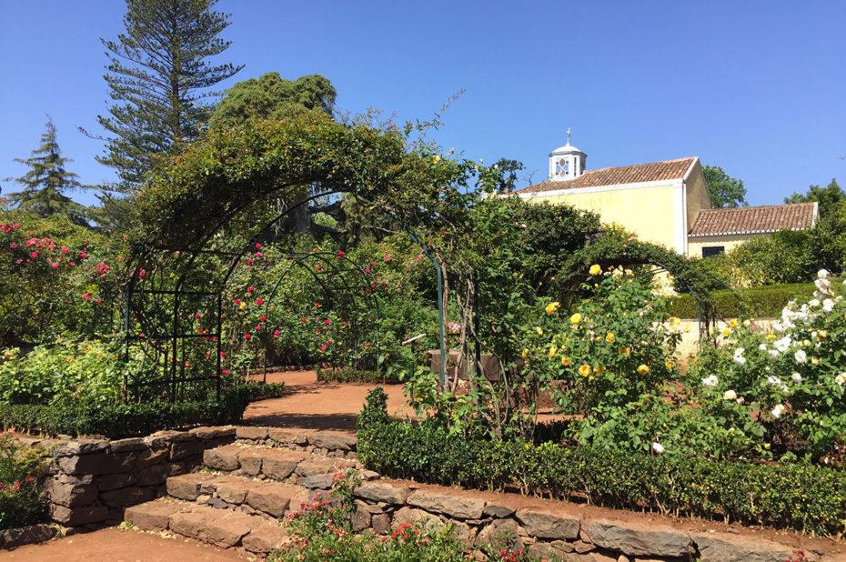La roseraie des jardins de Palheiro