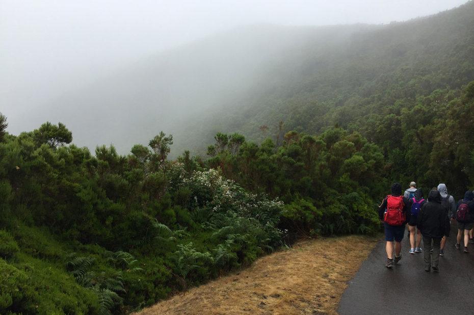 Au départ de la randonnée, brouillard et pluie fine