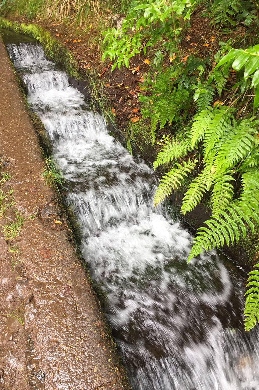 L'eau coule parfois rapidement dans les levadas