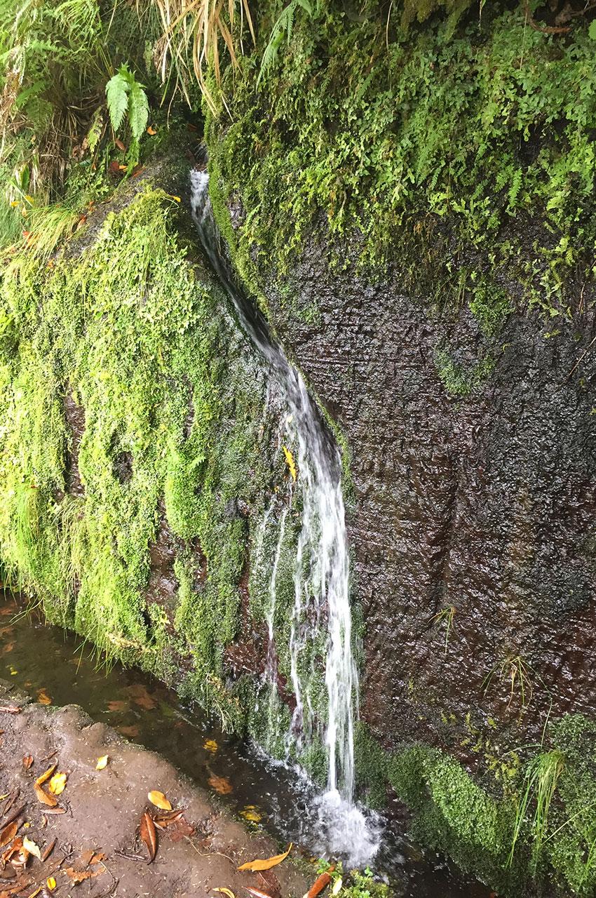 Petit ruisseau qui alimente une levada