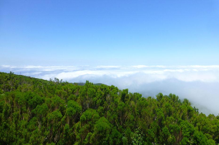 Une vue à couper le souffle sur une mer de nuages