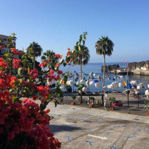 Câmara de Lobos, ville de pêcheurs sur l'île de Madère