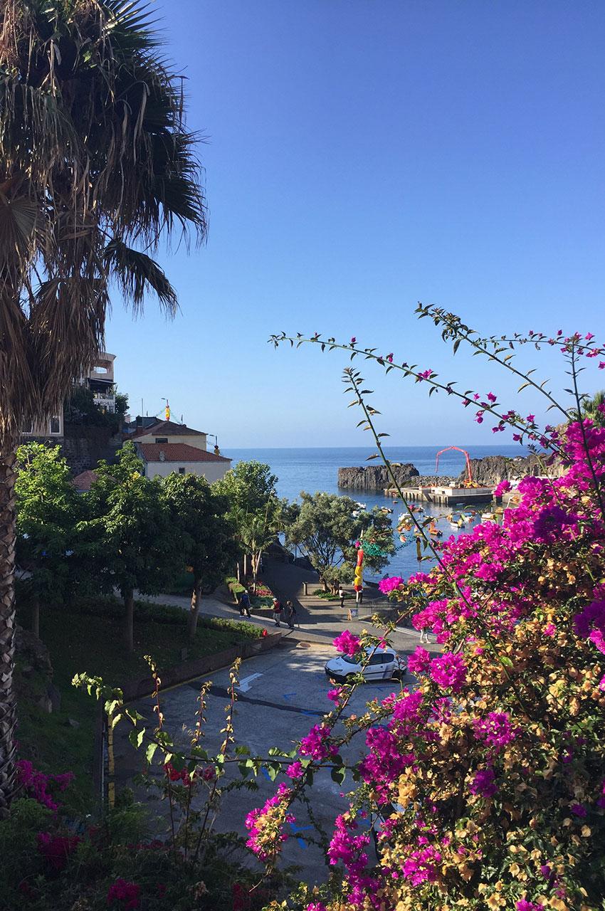 Le port fleuri de Câmara de Lobos