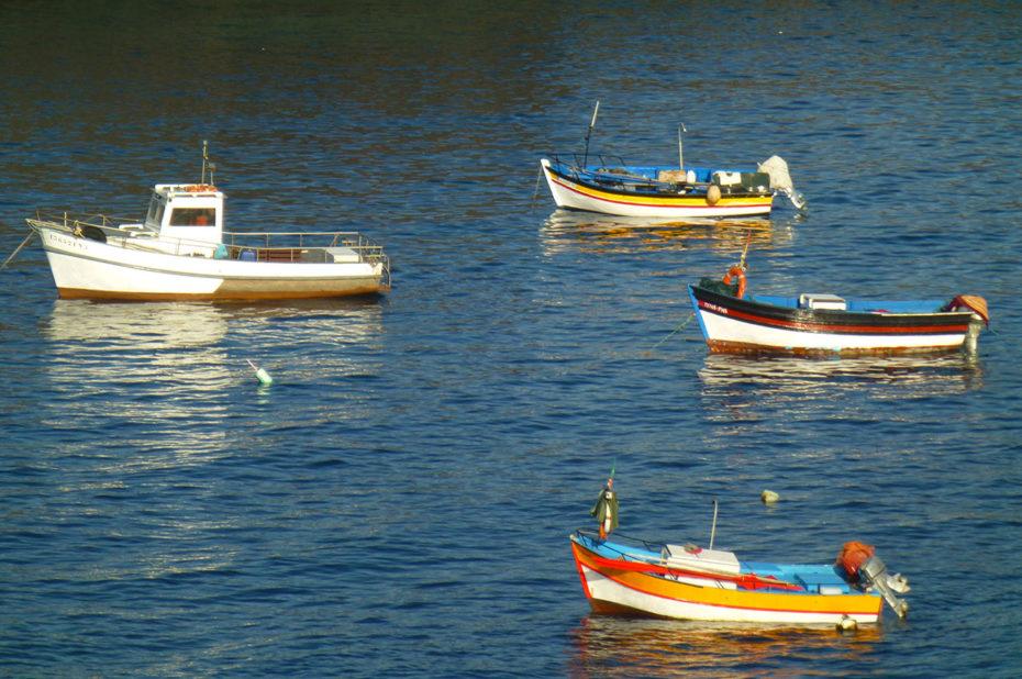 Quelques petits bateaux amarrés dans le port