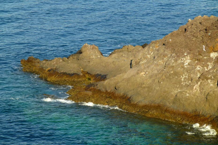 Les récifs de la côté non loin de Câmara de Lobos
