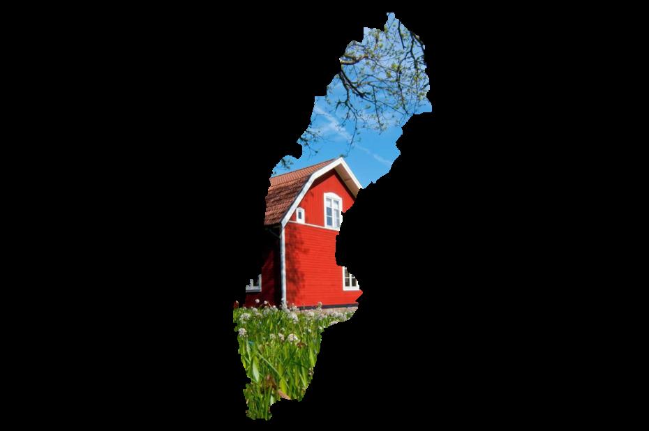 Reportages en Suède