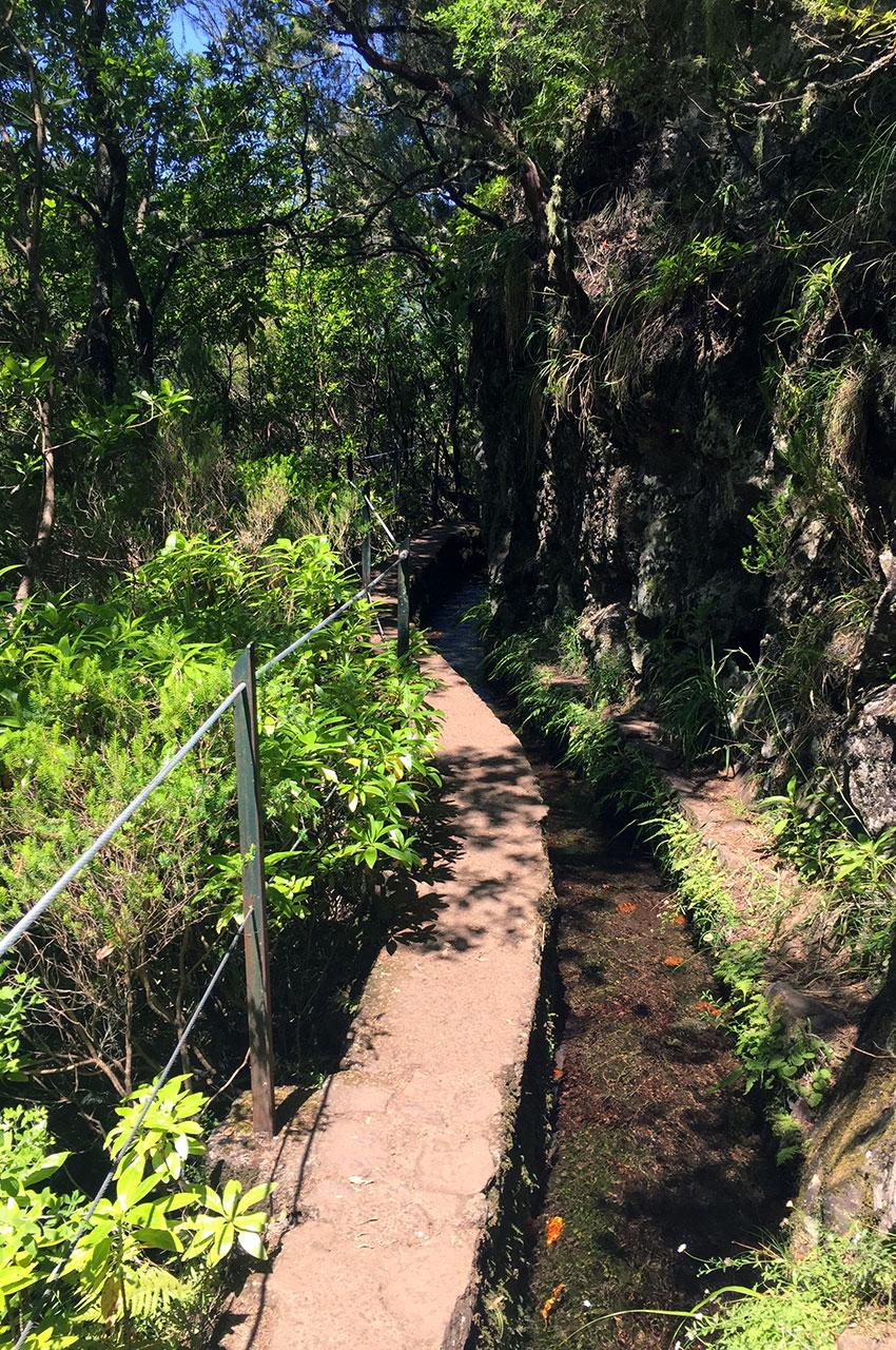 Le chemin se résume à un muret au bord de la levada