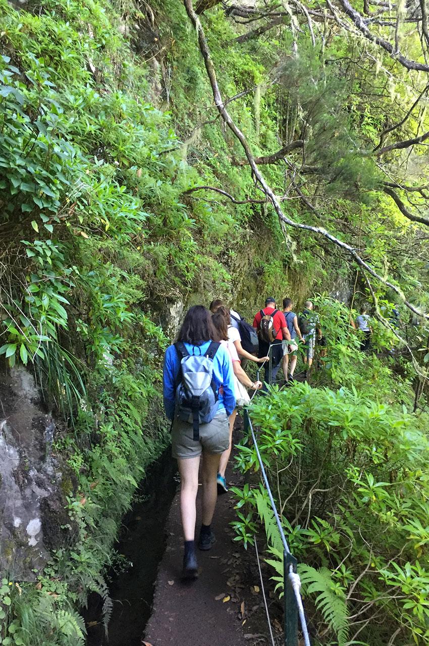 Cheminement au bord de la levada do Caldeirão Verde