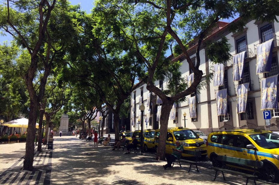 L'avenue Arriaga, piétonne et ombragée en son centre