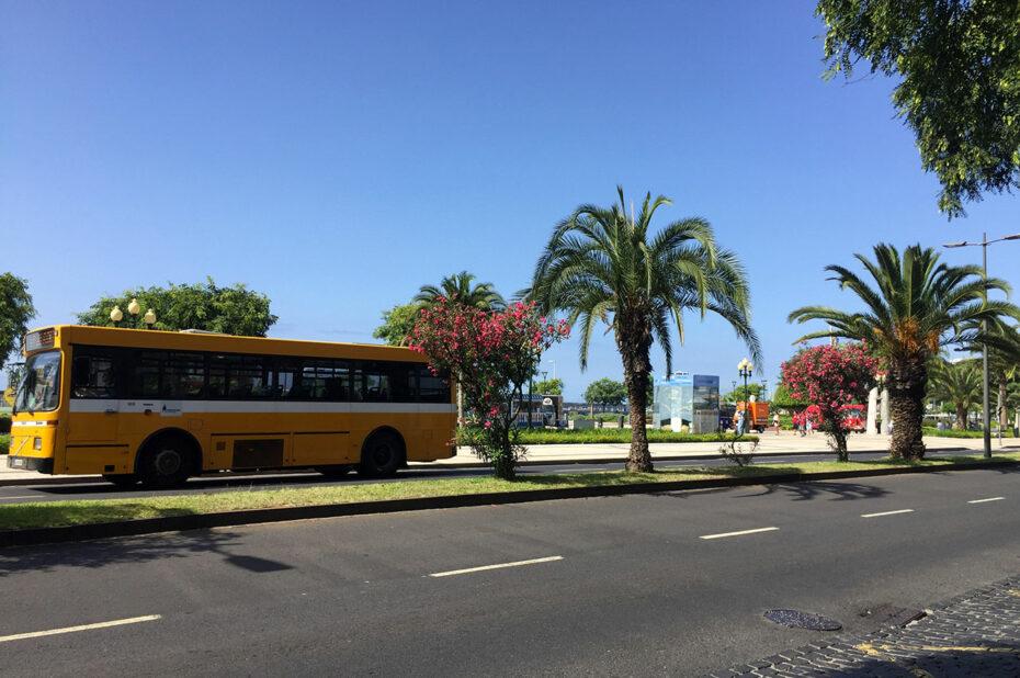 Bus jaune sur l'avenida do mar