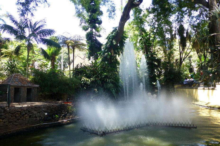 Jets d'eau au jardin municipal de Funchal