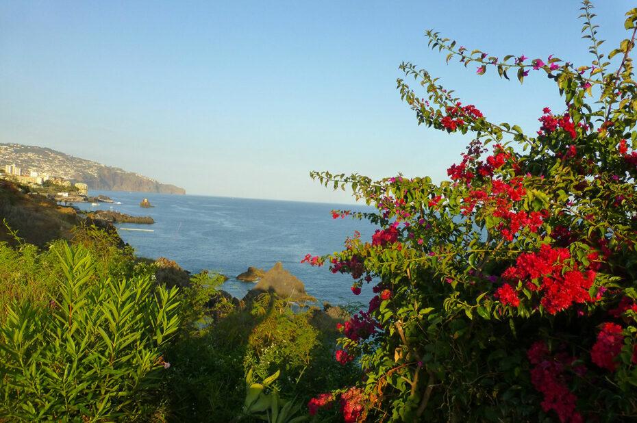 Madère, le jardin de l'Atlantique