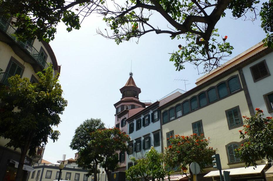 Les yeux vers le ciel dans le centre-ville de Funchal